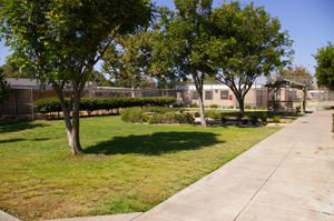 Las Colinas Detention Facility